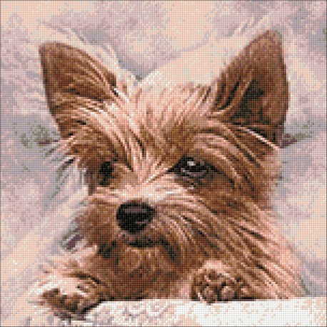 Diamond Painting Yorkshire Terrier