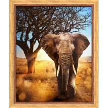Diamond Painting Afrikaanse Olifant