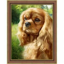 Diamond Painting Cocker Spaniel