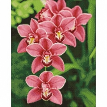 Diamond Painting Orchidee