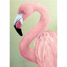 Diamond Painting Flamingo