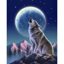 Diamond Painting Wolf bij Maanlicht