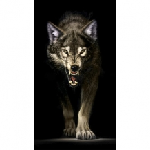 Diamond Painting Dreigende Wolf